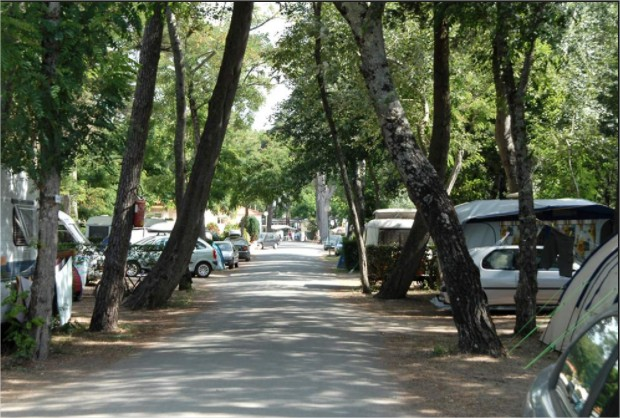 Les h bergements aux cypr s campings couleurs d 39 t for Camping garage mort gratuit loire atlantique