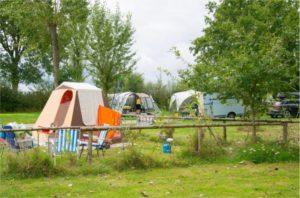 Photo emplacement de tente et camping-car au camping Campilô en Vendée